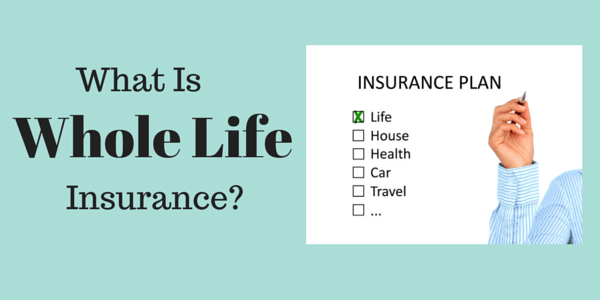 How Does Whole Life Insurance Work?