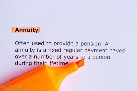 Annuity as a term with a long definition