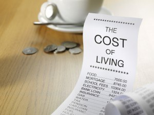 Cost of living including monthly expenses and other fixed costs